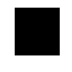 DAP Projects